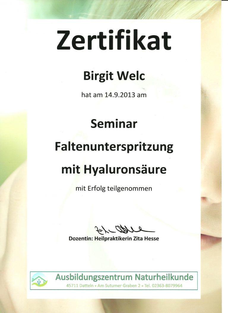 Zertifikat Faltenbehandlung Hyaluron