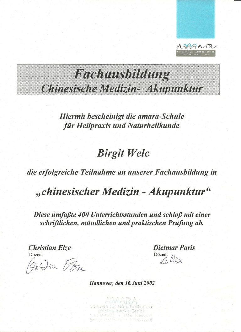 Zertifikat Faltenbehandlung Kosmetik Hyaluron Akupunktur