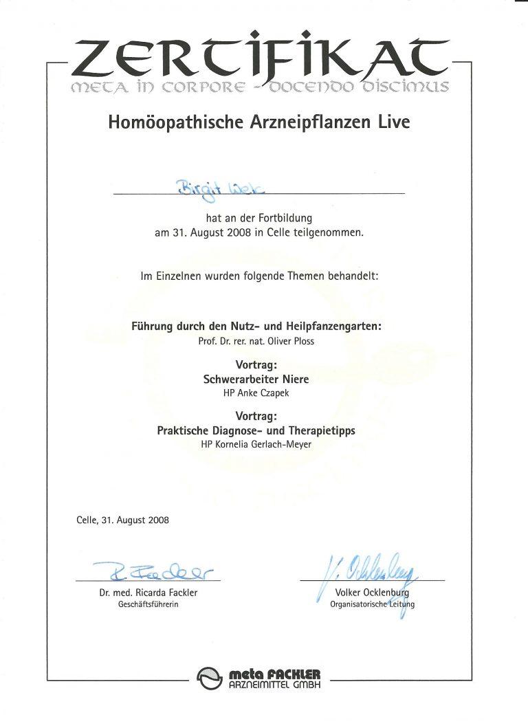 Zertifikat_Heilpraktikerin_Birgit_Welc_06