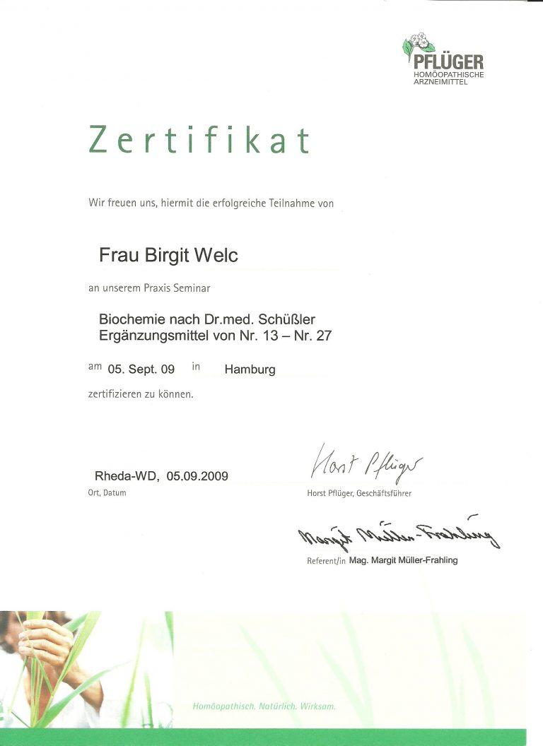 Zertifikat_Heilpraktikerin_Birgit_Welc_22