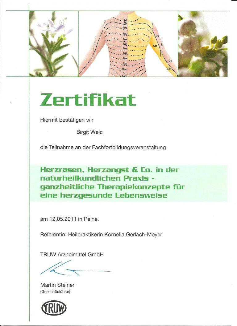 Zertifikat_Heilpraktikerin_Birgit_Welc_29